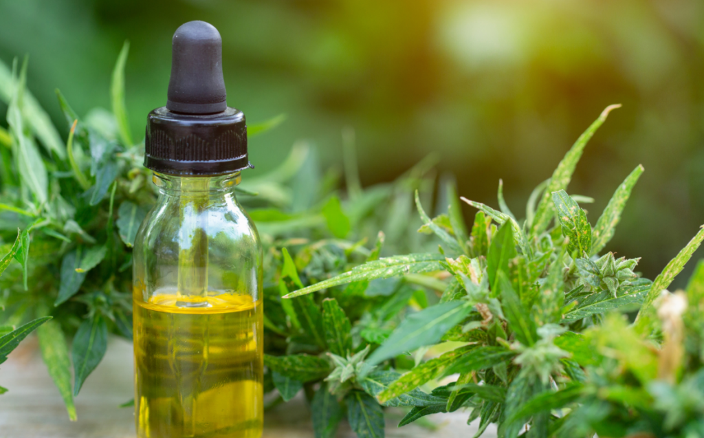 This image depicts CBD oil. According to Consumer Reports, 2019, more than 65 million people have tried CBD in the past 2 years.
